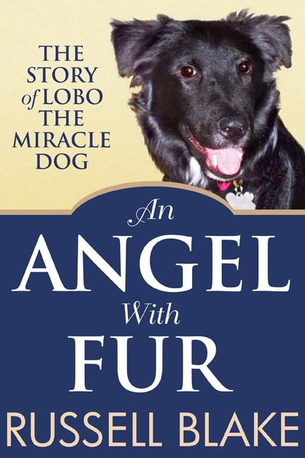 angel with fur-small